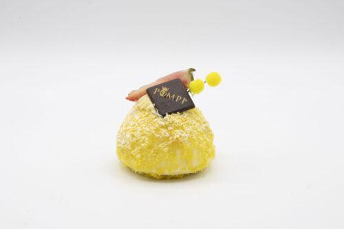 Mimosa Fragola